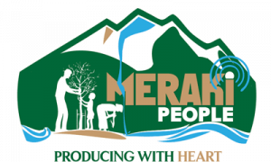 for-site-_meraki-logo2
